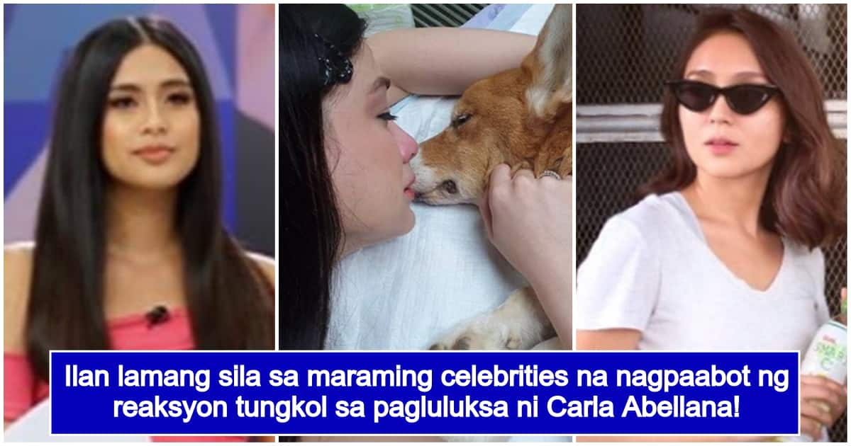 ABS-CBN & GMA celebs react to Carla Abellana's grief over