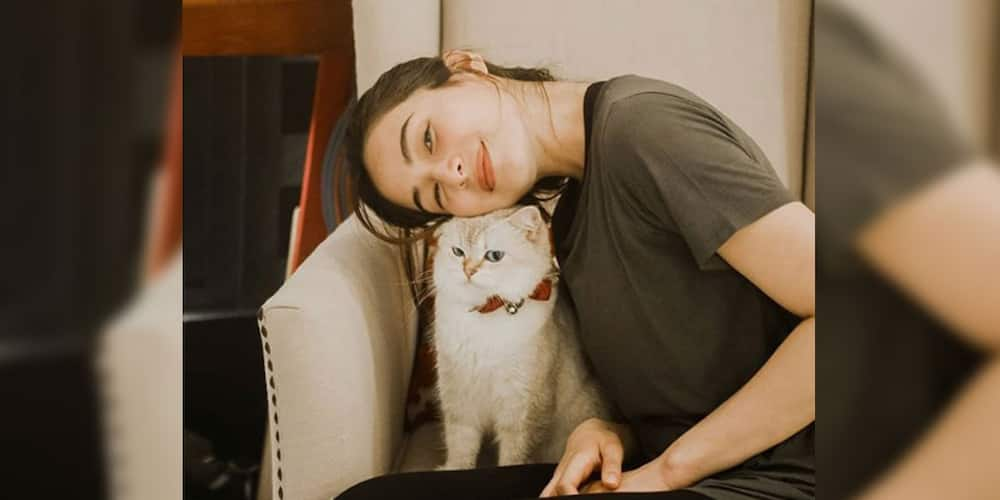 """Jennylyn Mercado fiercely lectures bashers who tell her either """"shut up"""" or """"'wag mangialam"""""""