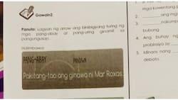 Nilalaman ng Gr. 6 learning module sa Las Piñas, binatikos ng isang netizen