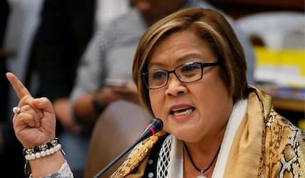 De Lima files Senate Bill 1949 to protect the youth