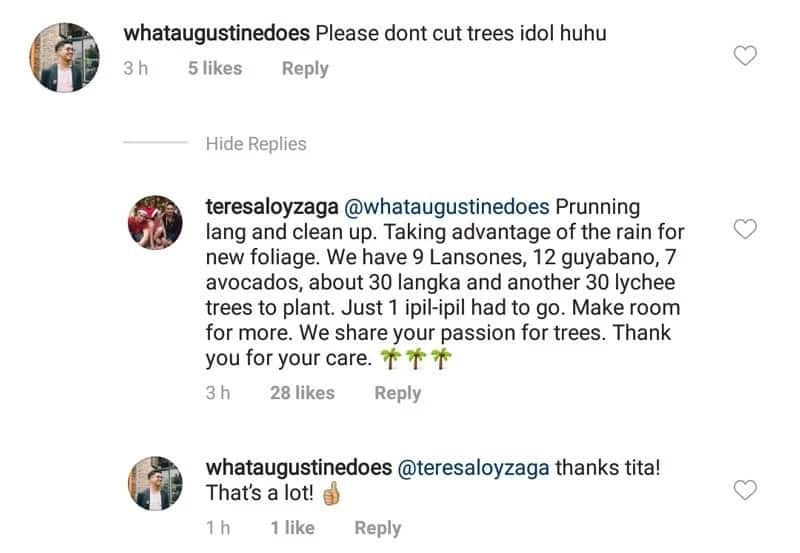Diego Loyzaga endures criticism from netizens after proudly posting photo cutting huge tree