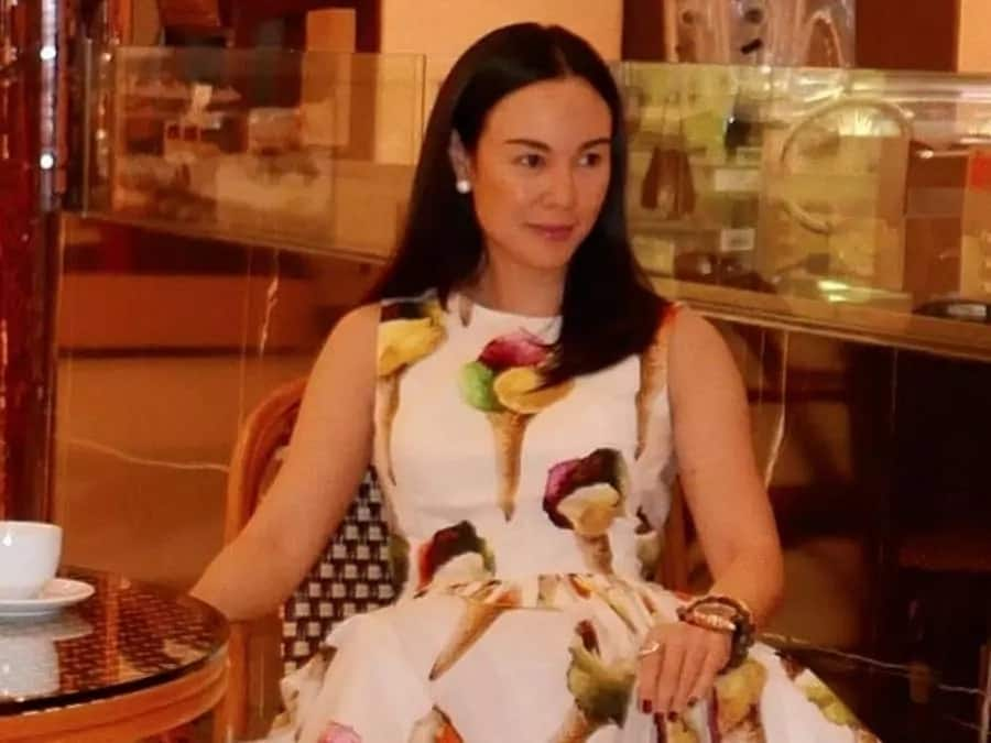 Sosyal hanggang pang-linis! Gretchen Barretto shows her recent expensive purchase to keep their mansion squeaky clean
