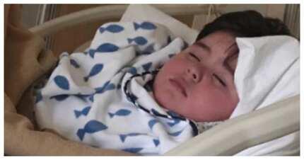 Di rin sila nakawala! 5 Pinoy Celebs na minsang naratay dahil sa dengue