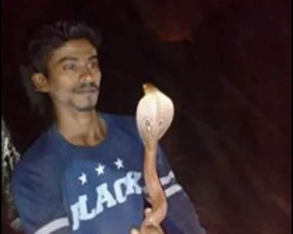 Indian dies after taking pictures with cobra