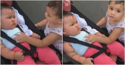 Super friendly! Baby Tali's cute bonding with her baby neighbor shown in a video