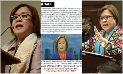 Canadian political scientist slams De Lima for bashing, trashing PH