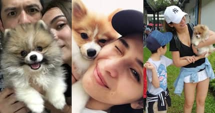 Jennylyn Mercado treats her dog Conor as her real baby and they are just too adorable to handle