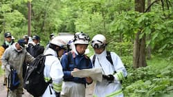 Japanese boy goes missing when left in the woods as punishment