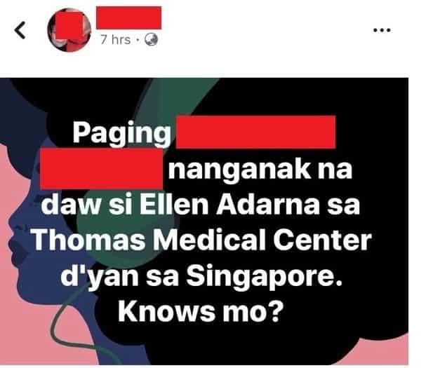 Ellen Adarna, sa Singapore diumano nanganak; mga iba pang detalye isiniwalat ng netizen