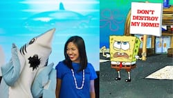 SEAtizens led by SPS Chief Mermaid sign petition to stop Nickelodeon from constructing theme park in Palawan