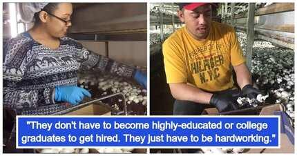 May libreng tirahan pa! OFWs earn up to P150,000 a month harvesting mushrooms in Canada