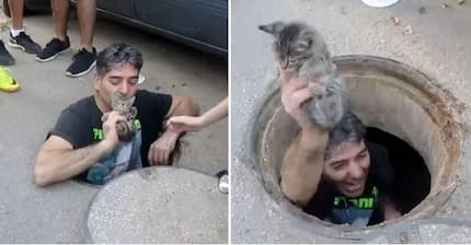 Heroic man jumps in storm drain to save poor kitten