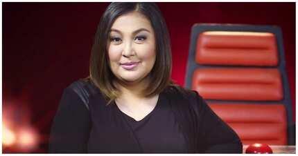 Wasak?! Megastar Sharon Cuneta sinupalpal at binulyawan ang mga haters at bashers