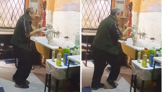 Pet Groomer Caught Dancing with a Client's Dog