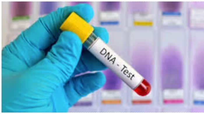 Gusto mo bang makasiguro? Halaga ng DNA test at prosesong ginagawa