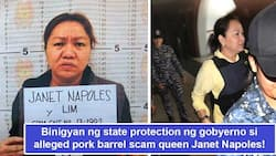 Pinoprotektahan siya ng gobyerno? DOJ gives alleged pork barrel scam queen Janet Napoles state protection with room for additional security