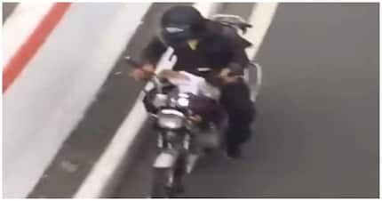 Good job! Rider, iniligtas ang isang aso sa tiyak na kapahamakan
