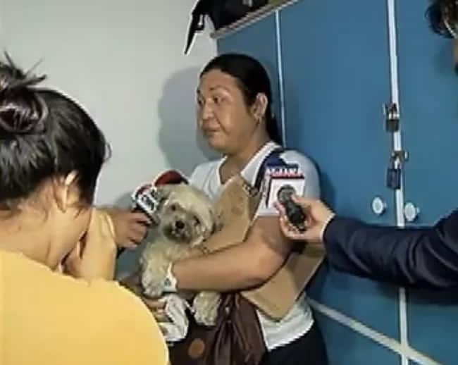 Pinatos pati aso! Household worker nabbed for dognapping employer's shih tzu