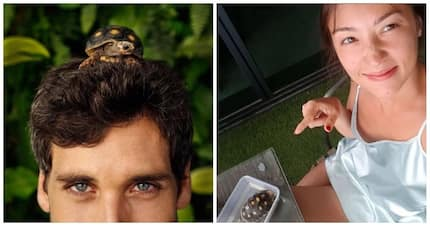 Solenn Heussaff must be so proud! Nico Bolzico shares photo teaser of a 'documentary' featuring their pet turtle Potato