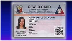 Alamin: Mga kailangan para makuha ang OFW ID na papalit sa OEC