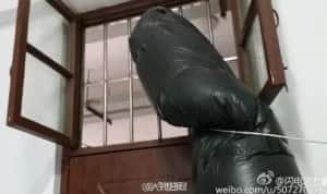 Chinese student comes up with anti-cigarette smoke device