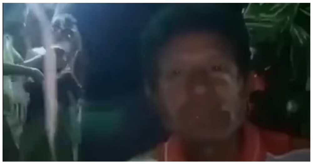 "Video na ng tinaguriang ""lighting engineer"", kinagiliwan online"