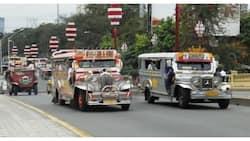 NCR, wala pa rin sa listahan ng mga lugar na pwede nang pumasada ang pampasaherong jeep