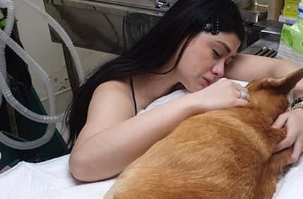 Carla Abellana, nagluluksa sa pag panaw ng kanyang alagang aso