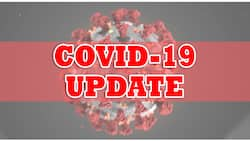 ECQ extended in NCR plus areas amid surge in COVID-19 cases