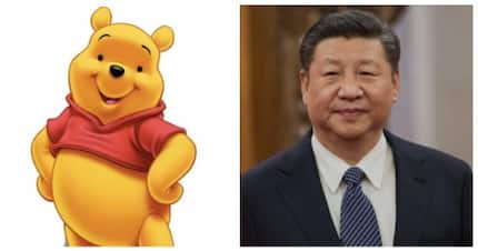 Some netizens use the photo of Winnie the Pooh to protest against Chinese President Xi Jinping