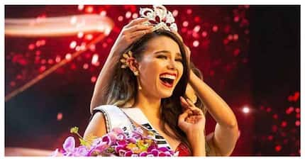 10 Pinoy celebrity newsmakers of 2018! Miss Universe Catriona Gray tops the list