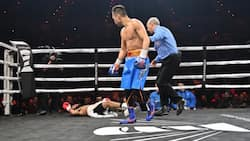 Donaire defends title in defeating Young via devastating 6th round KO