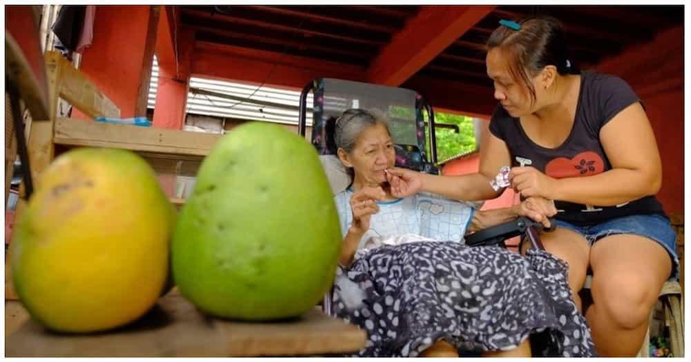 Anak, ibinarter ang tanim na pomelo para may maipambili ng gamot ng inang may sakit