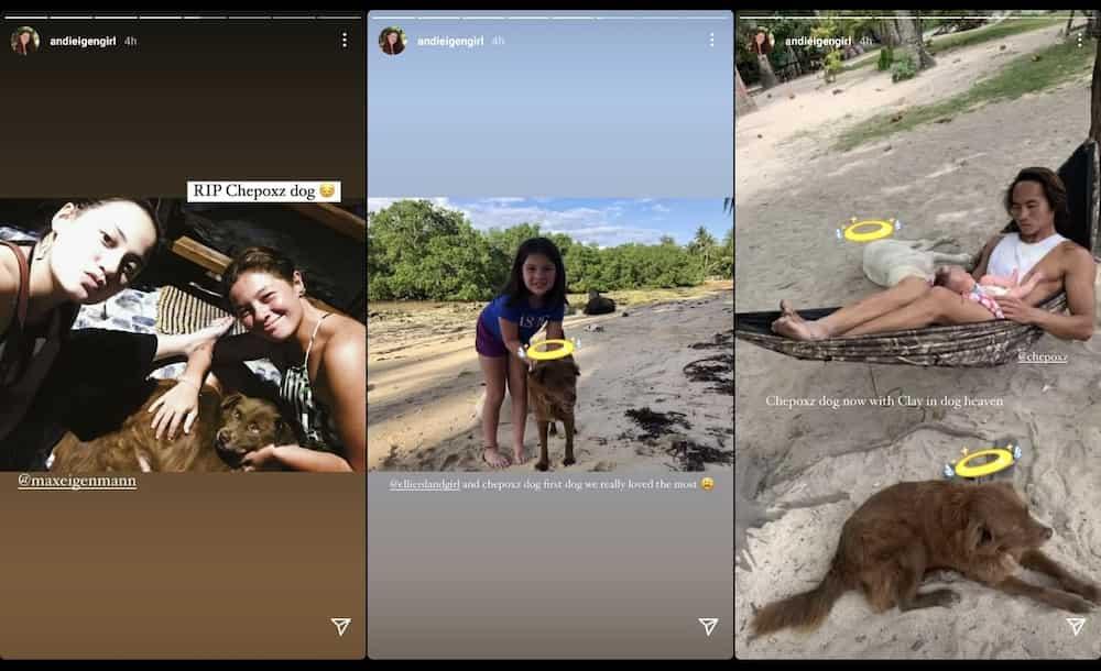 Andi Eigenmann, Philmar Alipayo mourn death of their pet dog Chep in viral posts