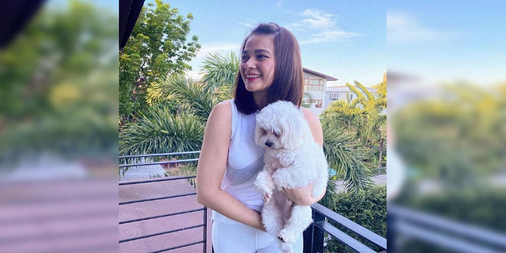 Bea Alonzo gets honest about what she felt when netizens shipped her with Mayor Vico