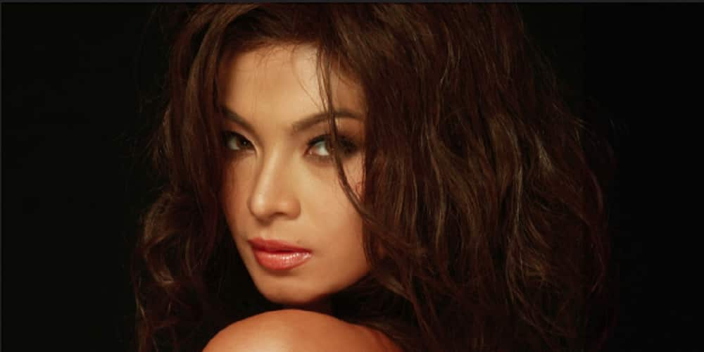 Harry Roque criticizes ABS-CBN's P400M COVID donation; Angel Locsin fires back