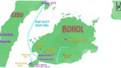 Light earthquake tremors disturbed Cebu and Bohol