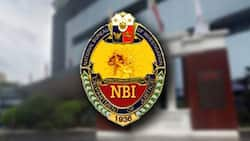 NBI clearance renewal in 2021: online application and requirements
