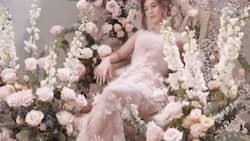 Barbie Imperial's fairytale-themed photoshoot stuns netizens
