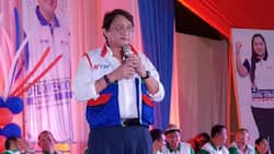 Duterte's top donor claims he refused to support Imee Marcos' campaign