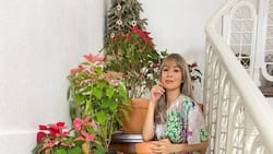 Aubrey Miles flaunts new investment made from selling plants