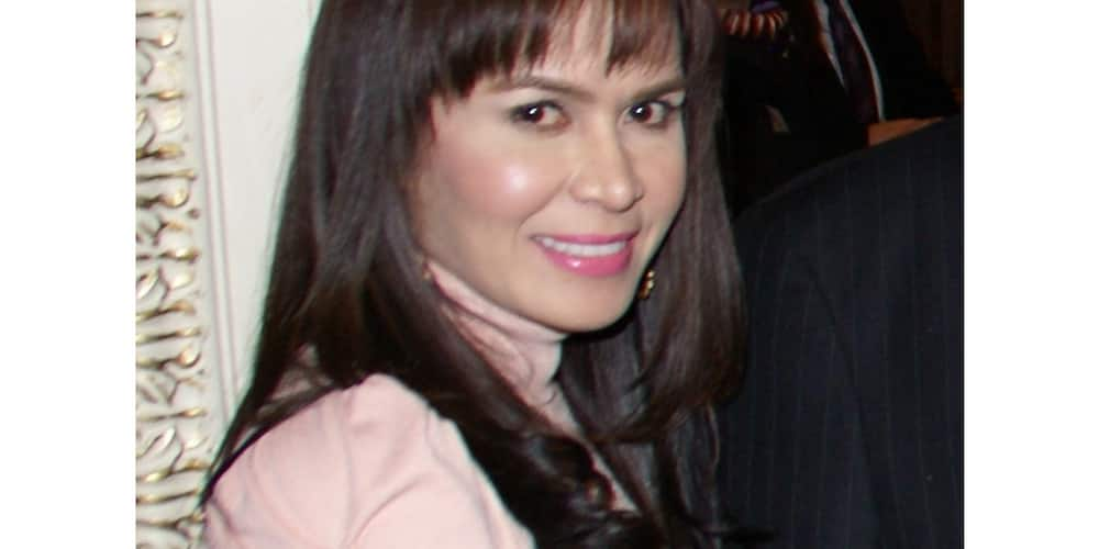 Jinkee Pacquiao's twin sister announces pregnancy on social media