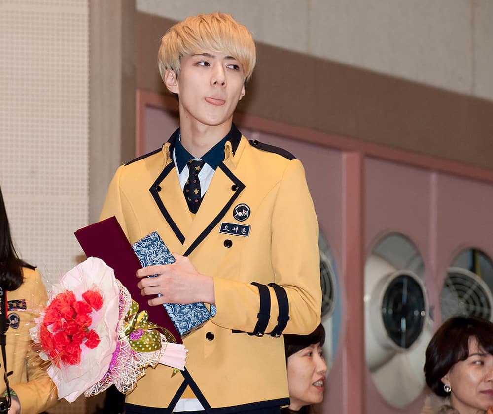EXO members height