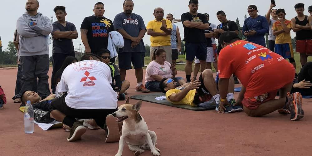 Aso at training partner ni Manny Pacquiao, namatay nang masagasaan sa GenSan
