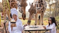 Vicki Belo, Scarlet Snow's breakfast photos with giraffes stun netizens