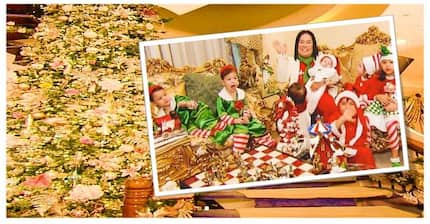 Gaganda naman! 10 Nagagandahang Christmas trees ng mga sikat ngayong Pasko
