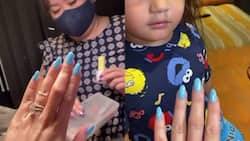 Video of Elias Modesto wanting to see diamonds on Ellen Adarna's nails goes viral