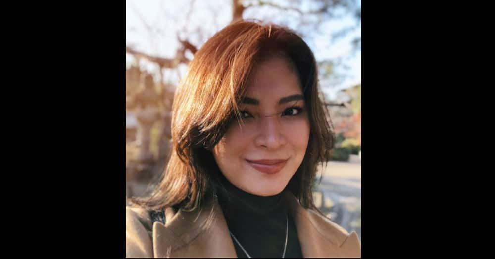 Angel Locsin shares 2021 wish list; includes weather on her wedding