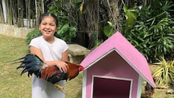 Lucy Gomez, pinadalan ng regalo ang anak ni Marjorie Barretto na si Erich