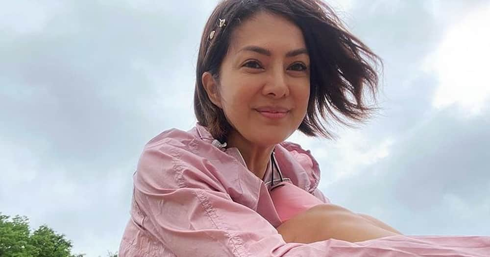 Alice Dixson slams netizen for questioning her Pfizer vaccination